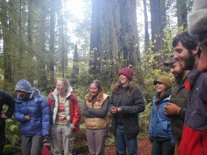 PNW.Learning Community in Redwoods