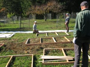 in service of building a greenhouse--a group can get a lot done!